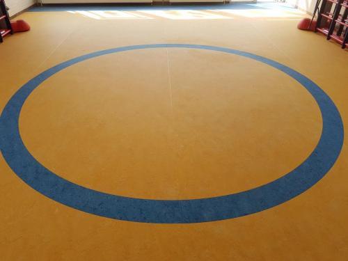 decoratieve linoleum sport vloer